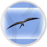 Swallow-tailed Kite Round Beach Towel