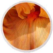 Tall Bearded Iris Named Penny Lane Round Beach Towel