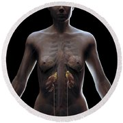 Urinary System Female Round Beach Towel