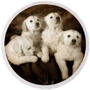 Vintage Festive Puppies Round Beach Towel by Angel  Tarantella
