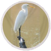 Still Waters White Heron Round Beach Towel