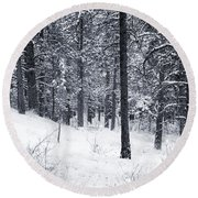 Winter In Pike National Forest Round Beach Towel