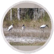 Wood Storks Round Beach Towel