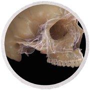 Anatomy Of The Skull Round Beach Towel