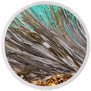 Bull Kelp Blades On Surface Background Texture Round Beach Towel by Stephan Pietzko