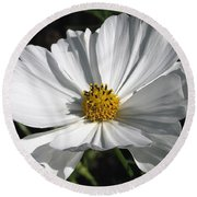 Cosmos Named Sensation Alba Round Beach Towel