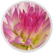 Dahlia Named Star Elite Round Beach Towel