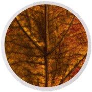 Dogwood Leaf Backlit Round Beach Towel