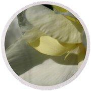 Dwarf Canna Lily Named Ermine Round Beach Towel