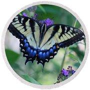 Eastern Tiger Swallowtail Butterfly On Butterfly Bush Round Beach Towel