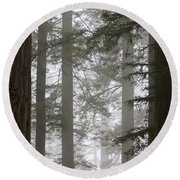 Foggy Coast Redwood Forest Round Beach Towel