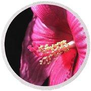 Hibiscus Named Luna Rose Round Beach Towel