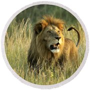 King Of The Savanna Round Beach Towel