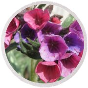 Pulmonaria Named Raspberry Splash Round Beach Towel