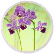 Purple Orchid-8 Round Beach Towel