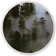 Redwood Creek Overlook With Giant Redwoods Sticking Out Above Lo Round Beach Towel