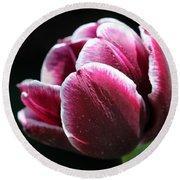 Triumph Tulip Named Jackpot Round Beach Towel