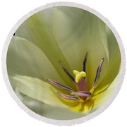 Tulip Named Perles De Printemp Round Beach Towel