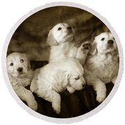 Vintage Festive Puppies Round Beach Towel by Angel  Tarantella