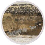Wildebeests Crossing Mara River, Kenya Round Beach Towel