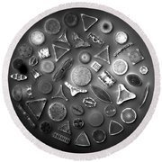 50 Diatom Species Arranged  Round Beach Towel