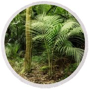 Jungle Round Beach Towel by Les Cunliffe