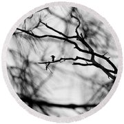 Bird In Tree Round Beach Towel