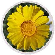 Crown Daisy Flower Round Beach Towel
