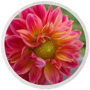 Dahlia Named Brian's Sun Round Beach Towel