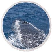 Humpback Whales Round Beach Towel