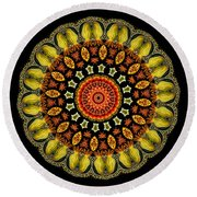 Kaleidoscope Ernst Haeckl Sea Life Series Round Beach Towel