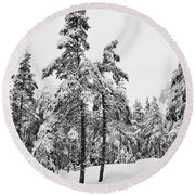 Pine Forest Winter Round Beach Towel