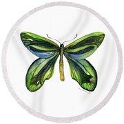 6 Queen Alexandra Butterfly Round Beach Towel