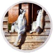 Ring Tailed Lemurs Round Beach Towel