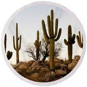 Saguaro Cacti Round Beach Towel