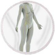 The Nervous System Female Round Beach Towel