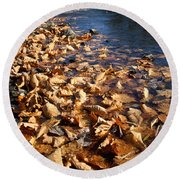 Ussurian Taiga Autumn Round Beach Towel by Anonymous