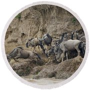 Wildebeests Crossing Mara River, Kenya Round Beach Towel