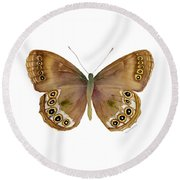 64 Woodland Brown Butterfly Round Beach Towel by Amy Kirkpatrick