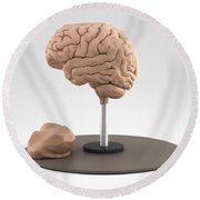 Clay Model Of Brain Round Beach Towel