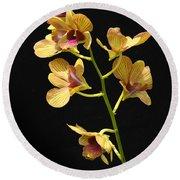 Dendrobium Orchid Round Beach Towel