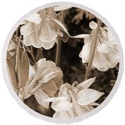 Double Columbine Named Light Blue Round Beach Towel