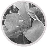 Dwarf Canna Lily Named Corsica Round Beach Towel