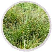 Grasses Round Beach Towel