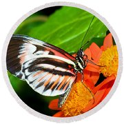 Piano Key Butterfly Round Beach Towel