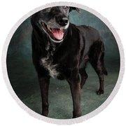 Portrait Of A Labrador Golden Mixed Dog Round Beach Towel