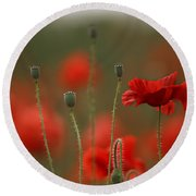 Red Round Beach Towel
