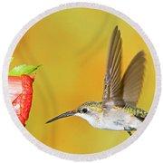 Ruby Throated Hummingbird Female Round Beach Towel