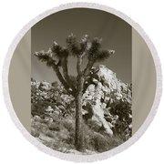 Joshua Tree National Park Landscape No 7 In Sepia Round Beach Towel