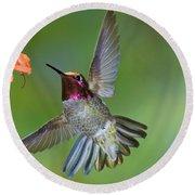 Annas Hummingbird Round Beach Towel